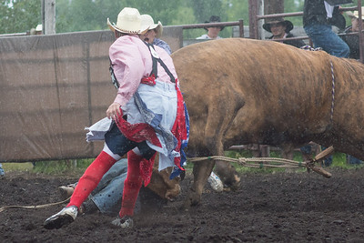 bulls-1209