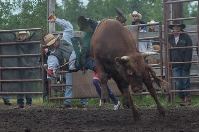 bulls-1218