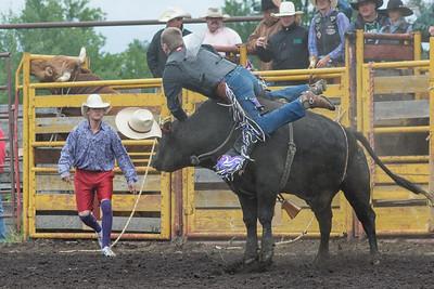 bulls-1244