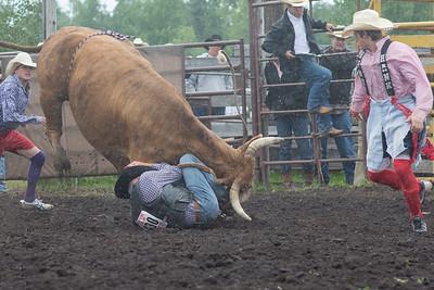 bulls-1208
