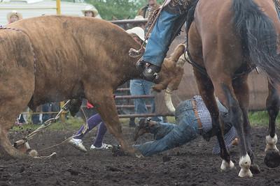 bulls-1212