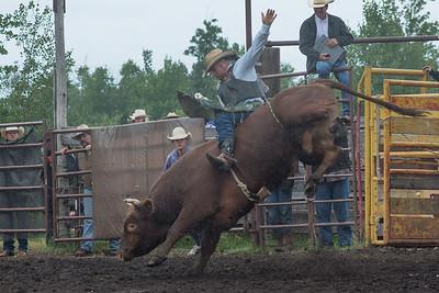 bulls-1217