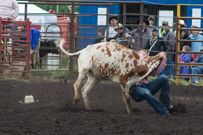 steers-1015