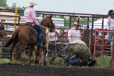 steers-1006