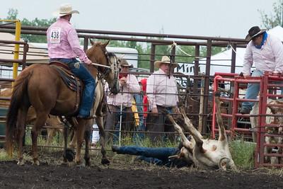 steers-1007