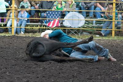 steers-1002