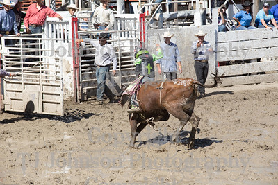 2014 Dayton Rodeo Bulls - Monday