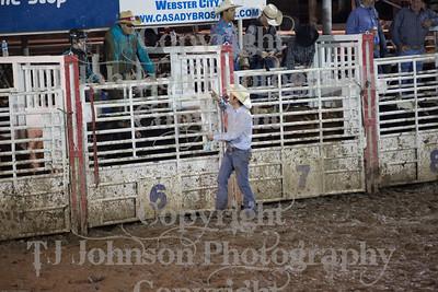 2014 Dayton Rodeo Bulls - Saturday