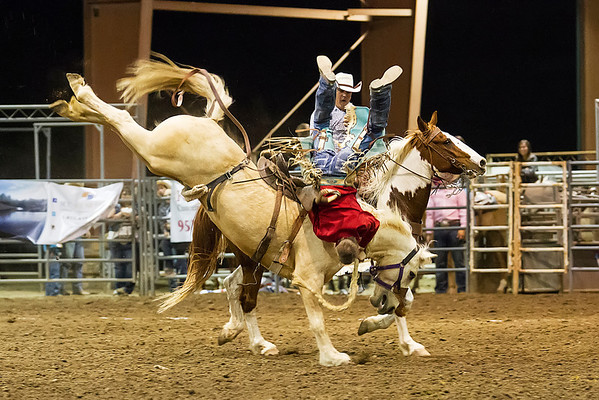 Extreme Ranch Rodeo - Norco Horseweek