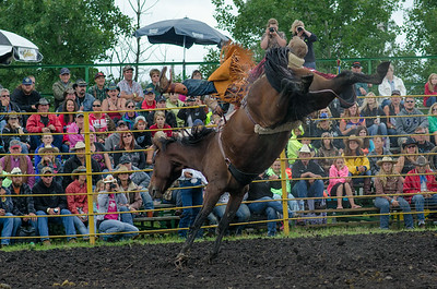 broncs_sunday_14-5372