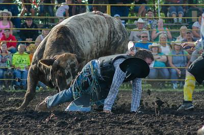bulls_fri_14-3786