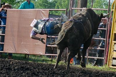 bulls_fri_14-3800