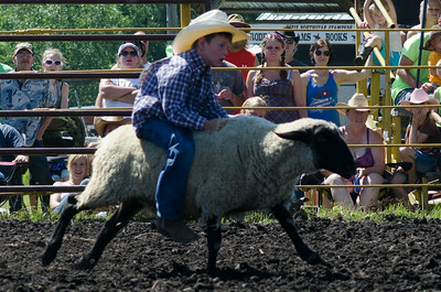 mutton_busting_saturday_14-4430