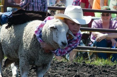 mutton_busting_saturday_14-4493