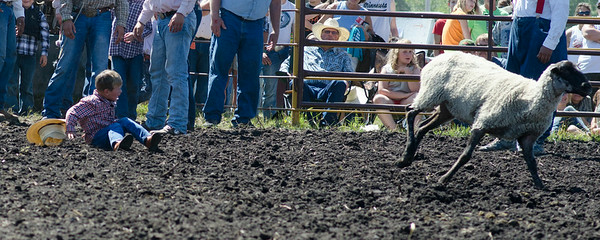 mutton_busting_saturday_14-4446
