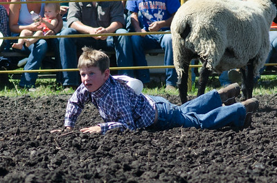 mutton_busting_saturday_14-4439