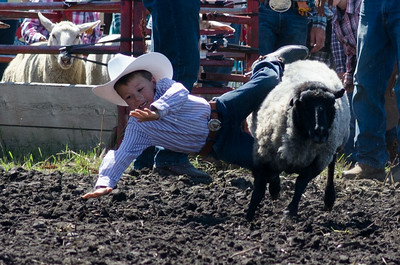 mutton_busting_saturday_14-4413