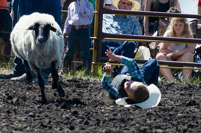 mutton_busting_saturday_14-4457