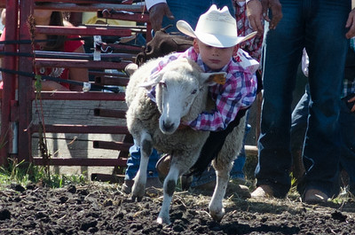 mutton_busting_saturday_14-4486