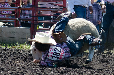mutton_busting_saturday_14-4423