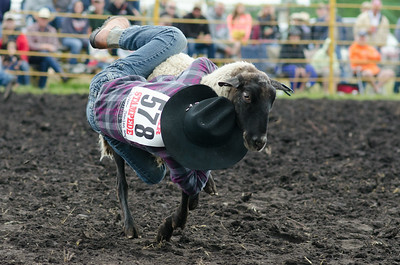 mutton_busting_sunday_14-5494
