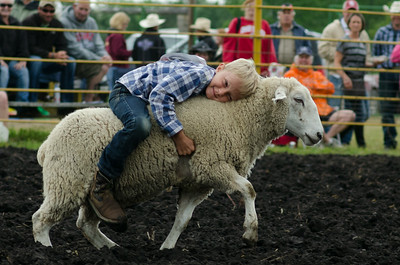 mutton_busting_sunday_14-5451