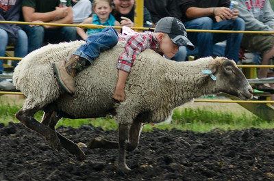mutton_busting_sunday_14-5421