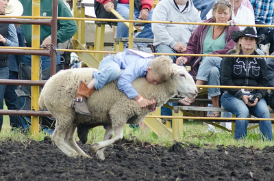 mutton_busting_sunday_14-5499
