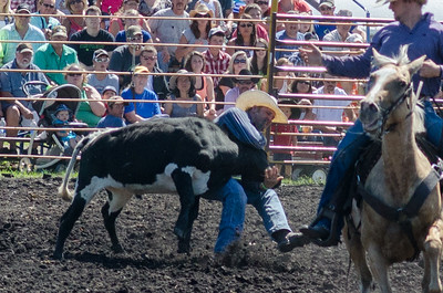steer_wrestling_saturday_14-4644