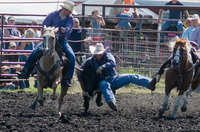 steer_wrestling_saturday_14-4638