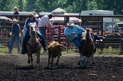 steer_wrestling_saturday_14-4613