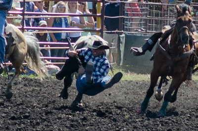 steer_wrestling_saturday_14-4653