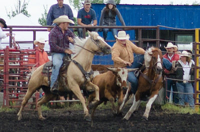 steer_wrestling_sunday_14-5695