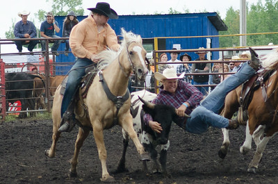 steer_wrestling_sunday_14-5669