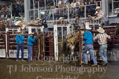 2014 Tri-State Saddle Bronc - Sat