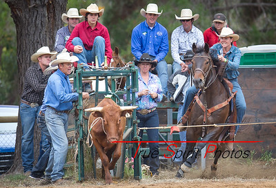Boddington_Rodeo_07 11 2015-3