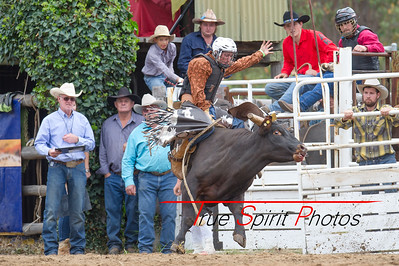 Boddington_Rodeo_07 11 2015-18
