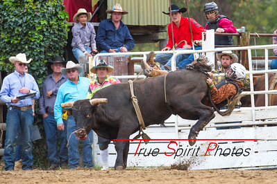 Boddington_Rodeo_07 11 2015-19