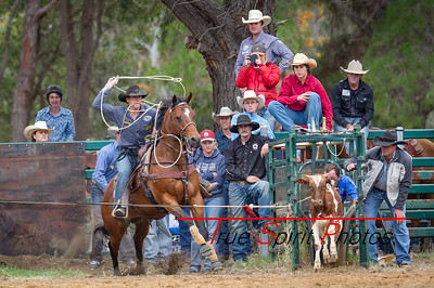 Boddington_Rodeo_07 11 2015-15