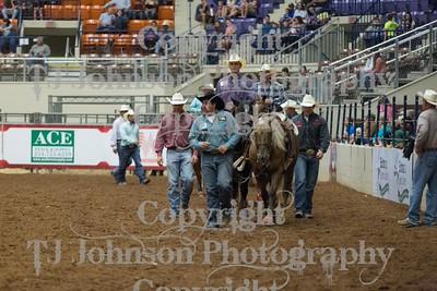 2015 HOT Steer Wrestling 10-16
