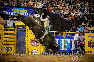 unsorted bull riding