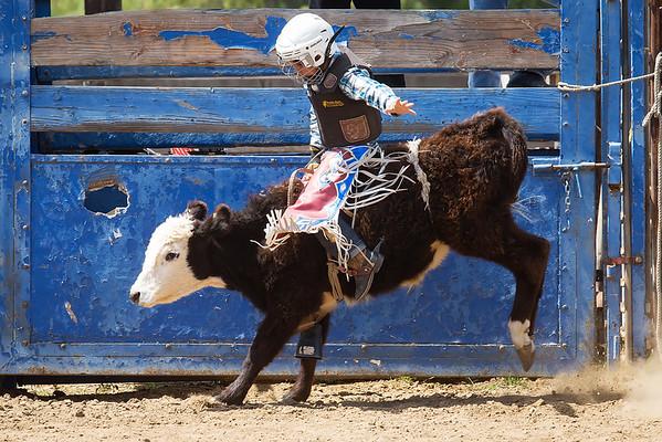 WCJBR - April 3 Rodeo