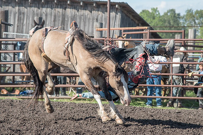 2016 rodeo friday broncs-2669
