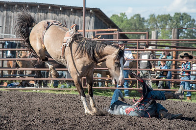 2016 rodeo friday broncs-2670