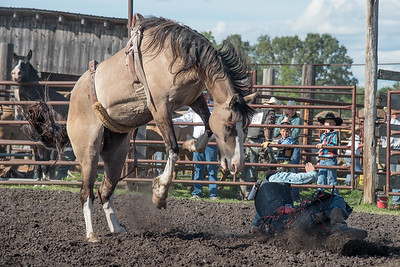 2016 rodeo friday broncs-2671