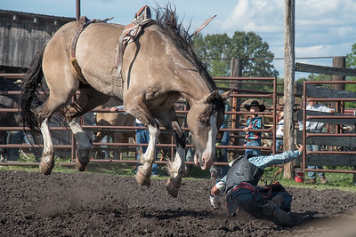 2016 rodeo friday broncs-2672