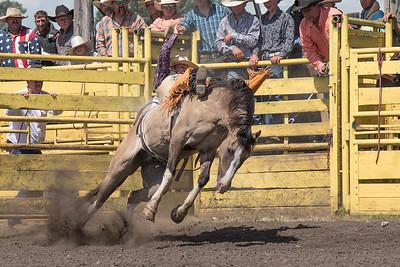 2016 rodeo sunday broncs-4905