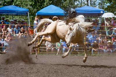 2016 rodeo sunday broncs-4857