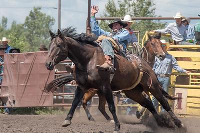 2016 rodeo sunday broncs-4886