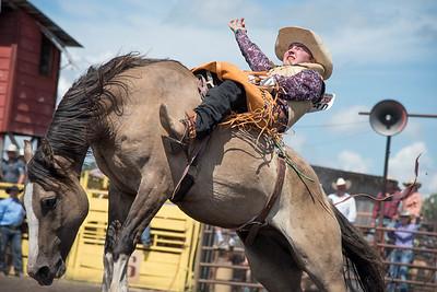 2016 rodeo sunday broncs-4915